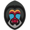 Mandrill time tracking